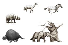 Animales de la Megafauna