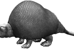 Gliptodonte