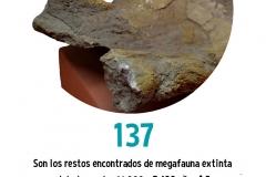 Restos de Megafauna